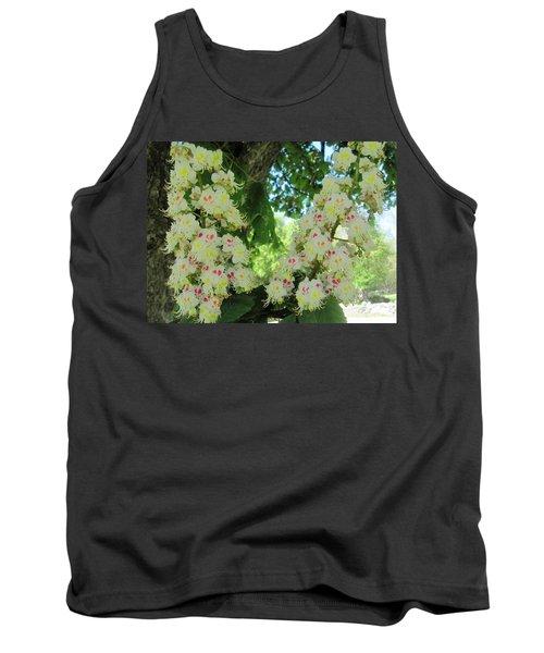Chestnut Tree Flowers Tank Top by Paul Meinerth