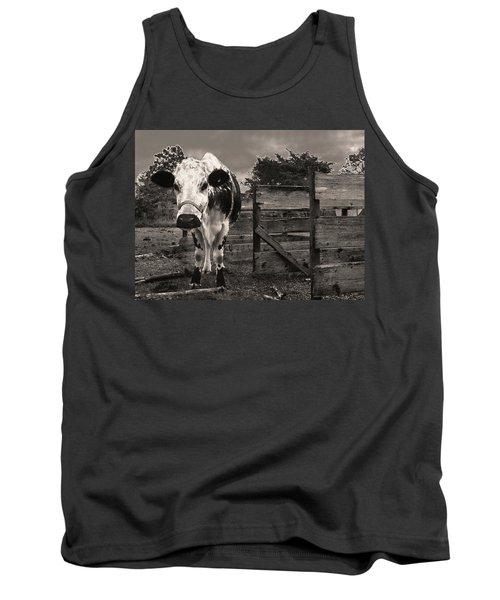 Chocolate Chip At The Stables Tank Top