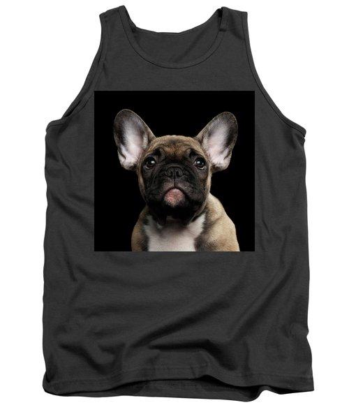 Closeup Portrait French Bulldog Puppy, Cute Looking In Camera Tank Top
