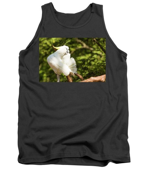 Cockatoo Preaning Tank Top