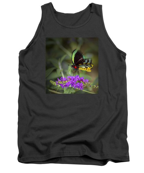 Colorful Northern Butterfly Tank Top by Penny Lisowski