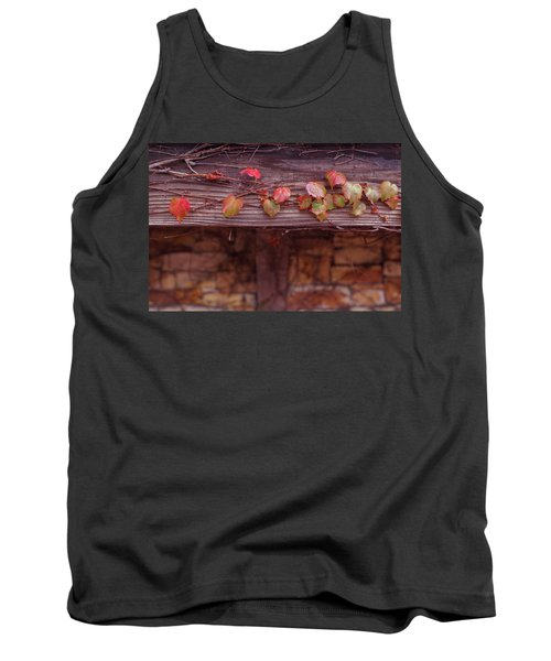 Colorful Tree Leaves Changing Color For Auyumn,fall Season In Oc Tank Top