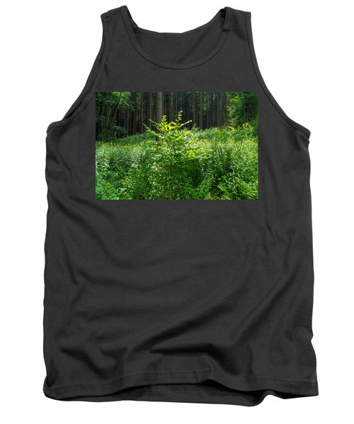 Colors Of A Forest In Vogelsberg Tank Top