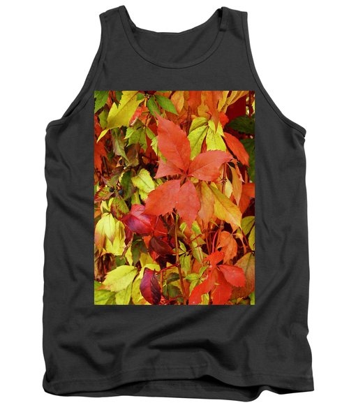 Colours Of Autumn Tank Top by Brian Chase