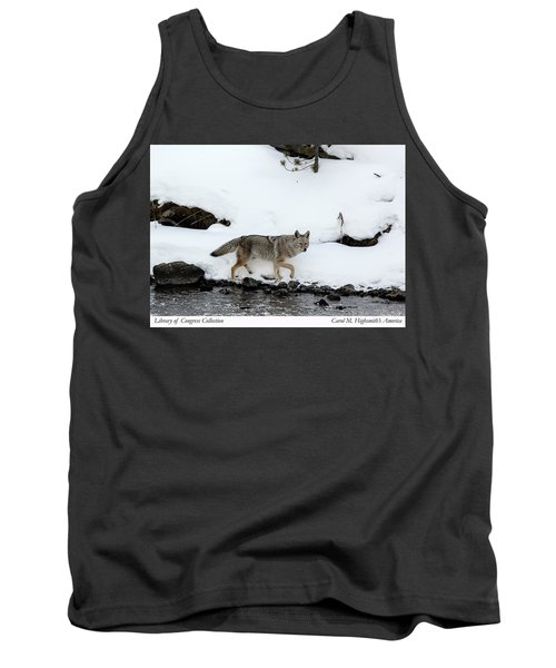 Coyote In Yellowstone National Park Tank Top by Carol M Highsmith