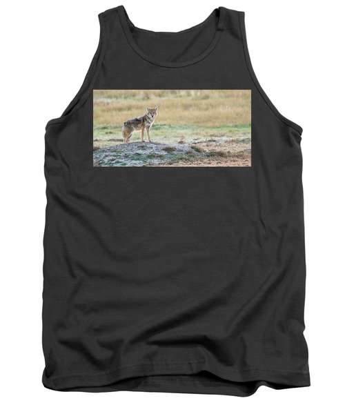 Tank Top featuring the photograph Coyotee by Kelly Marquardt