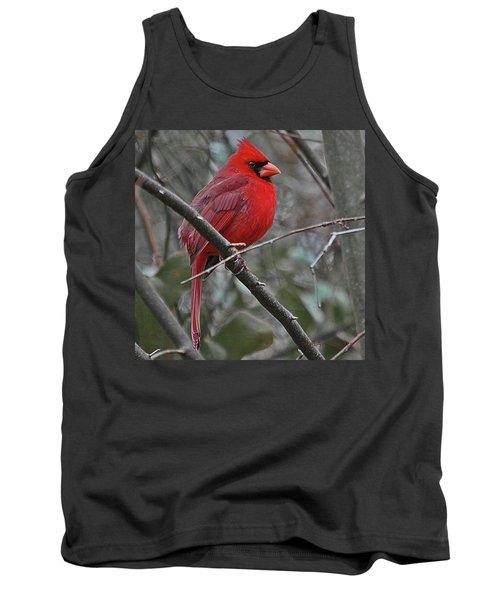Crimson Cardinal Tank Top
