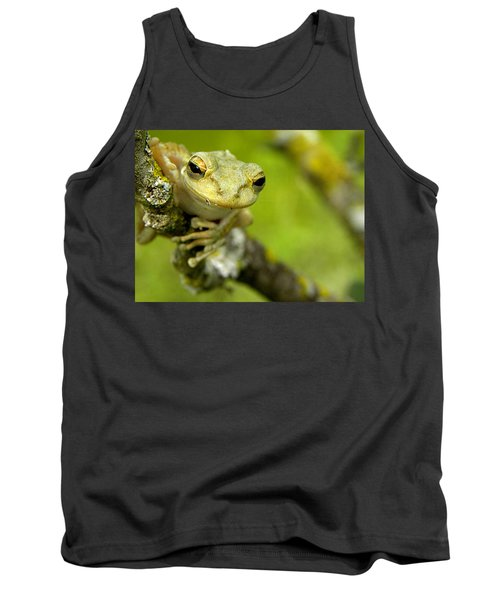 Cuban Tree Frog 000 Tank Top by Chris Mercer