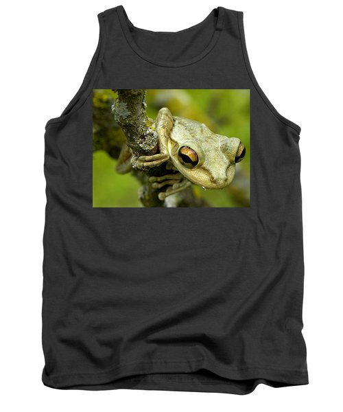 Cuban Tree Frog  Tank Top by Chris Mercer