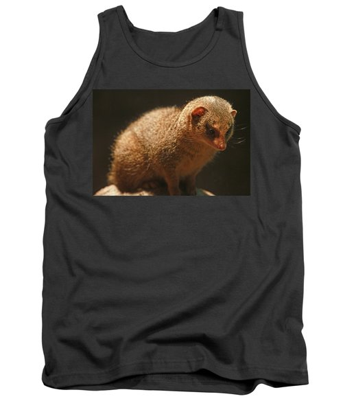 Tank Top featuring the photograph Curiosity At Rest by Laddie Halupa