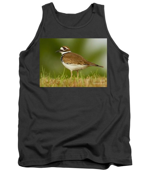 Curious Killdeer Tank Top by Myrna Bradshaw