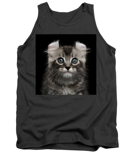 Cute American Curl Kitten With Twisted Ears Isolated Black Background Tank Top