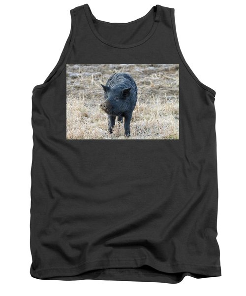 Tank Top featuring the photograph Cute Black Pig by James BO Insogna