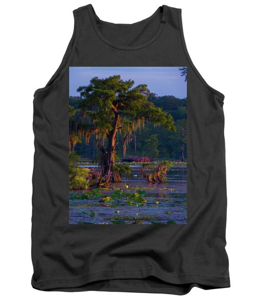 Cypress In The Sunset Tank Top by Kimo Fernandez