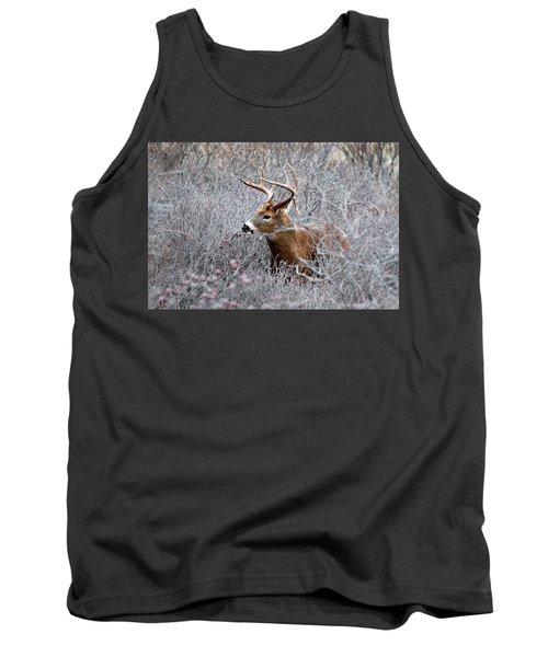 Deer On A Frosty Morning  Tank Top by Nancy Landry