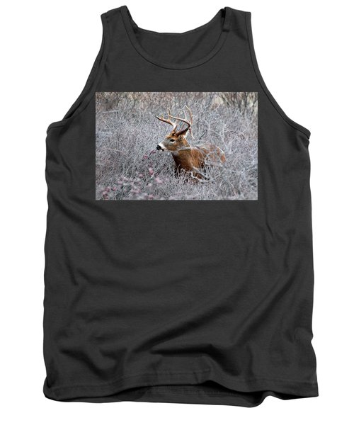 Deer On A Frosty Morning  Tank Top
