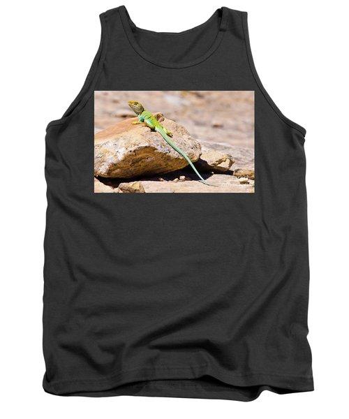 Desert Colors Tank Top