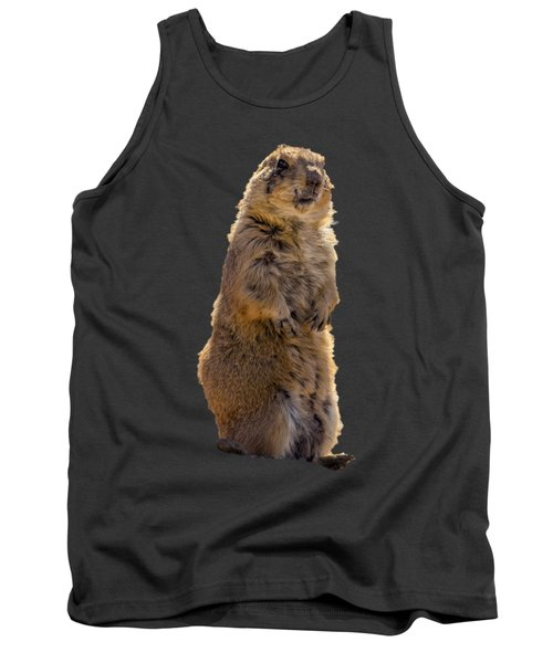 Desert Dawg Tank Top by Mark Myhaver