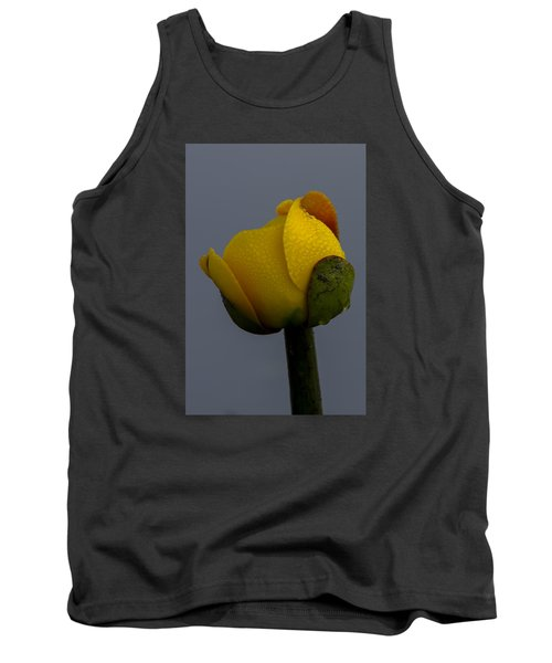 Dew Covered Yellow Water Lily Tank Top