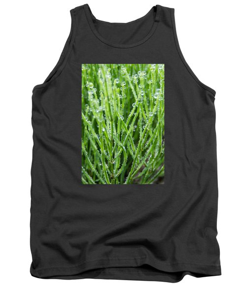 Dew Drop Tank Top