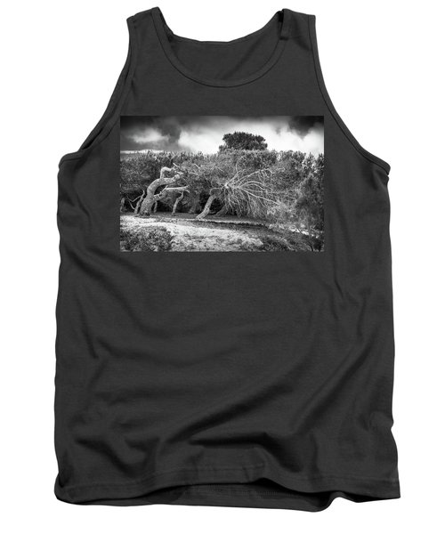 Distorted Trees Tank Top