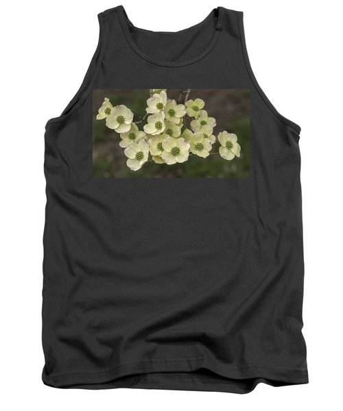 Dogwood Dance In White Tank Top by Don Spenner