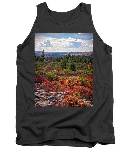 Dolly Sods Wilderness In Autumn 4273 Tank Top