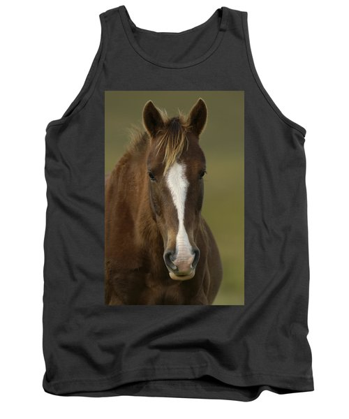 Domestic Horse Equus Caballus Portrait Tank Top
