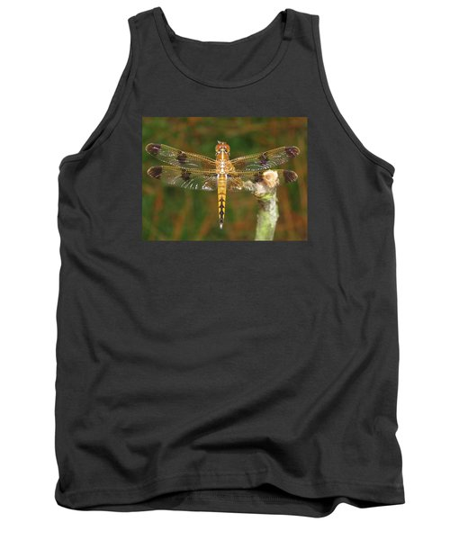 Painted Skimmer Dragonfly Tank Top by Phyllis Beiser