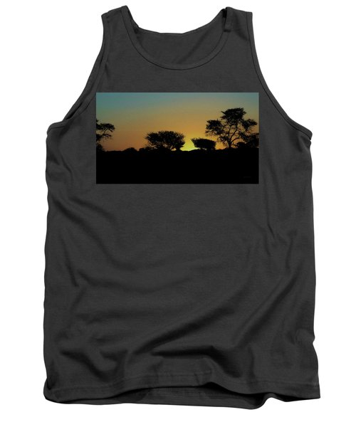 Dreams Of Namibian Sunsets Tank Top by Ernie Echols