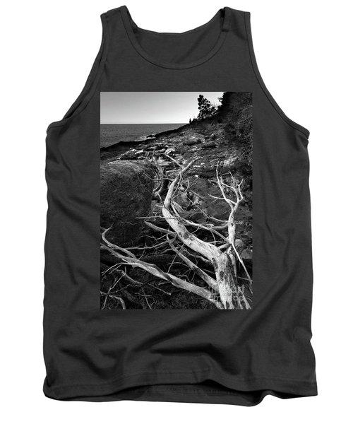 Driftwood Tree, La Verna Preserve, Bristol, Maine  -20999-30003 Tank Top