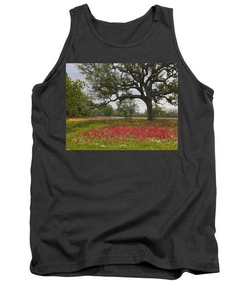 Drummonds Phlox Meadow Near Leming Texas Tank Top