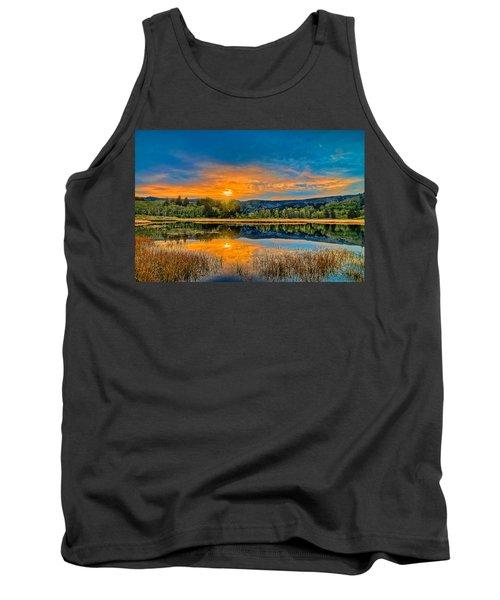 Dry Lagoon Spring Morning Tank Top