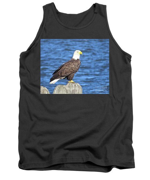 Eagle At East Point  Tank Top by Nancy Patterson