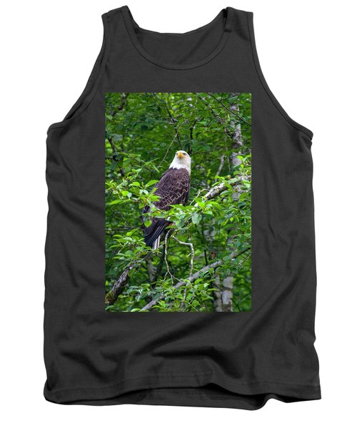 Eagle In Tree Tank Top
