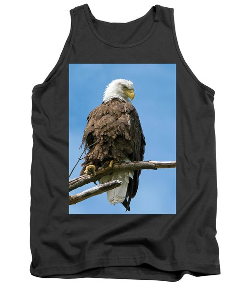 Eagle On Perch Tank Top