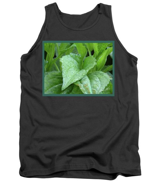 Echinacea After The Rain I Tank Top