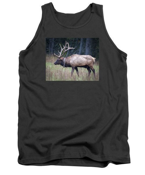 Tank Top featuring the photograph Elk by Tyson and Kathy Smith