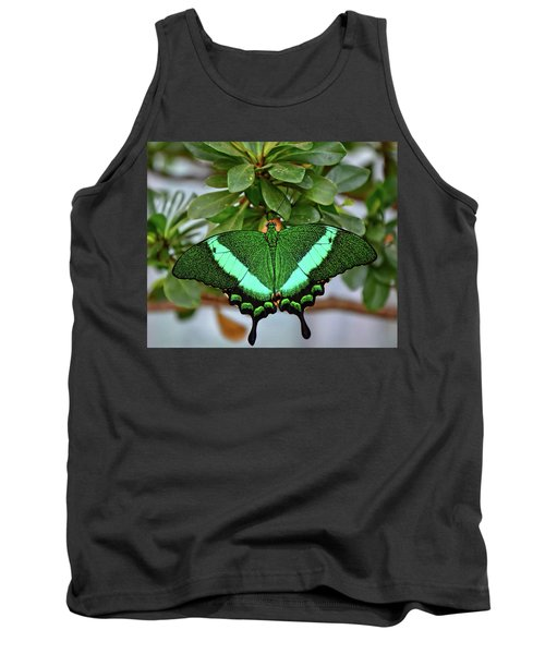 Emerald Swallowtail Butterfly Tank Top by Ronda Ryan