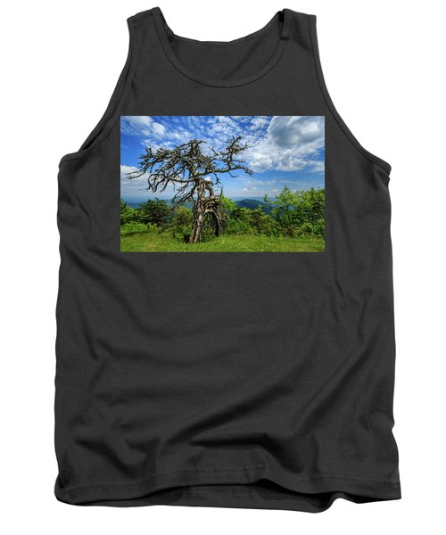 Ent At The Top Of The Hill - Color Tank Top by Joni Eskridge