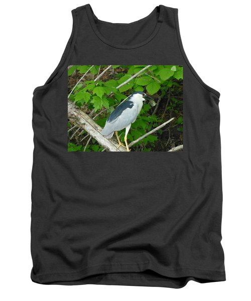 Evening Snack For A Night Heron Tank Top by Donald C Morgan