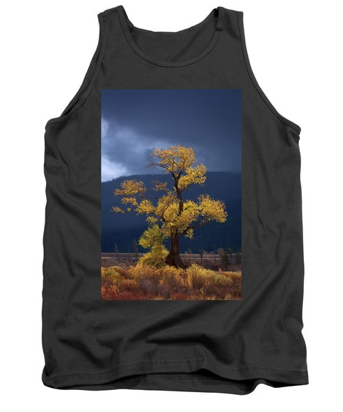 Facing The Storm Tank Top by Edgars Erglis