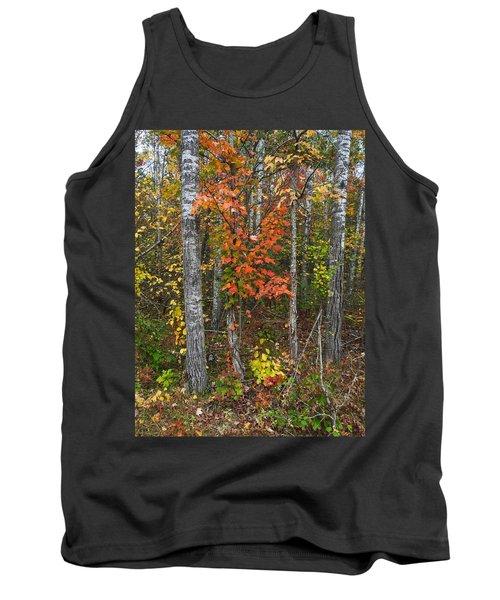 Fall Color At Gladwin 4543 Tank Top