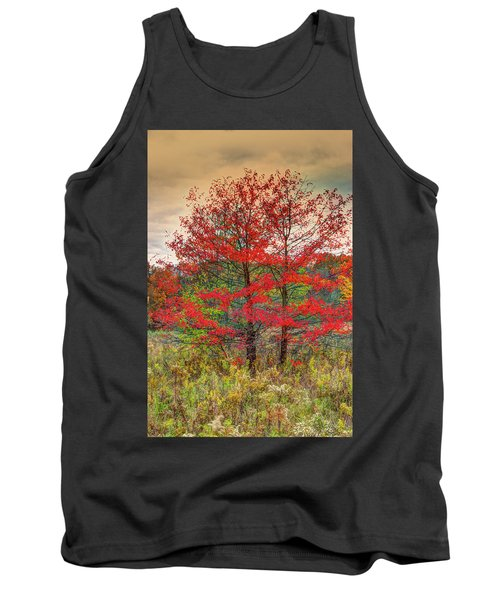 Tank Top featuring the photograph Fall Painting by Skip Tribby