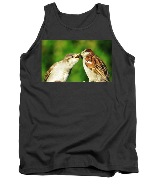Feeding Baby Sparrow 3 Tank Top