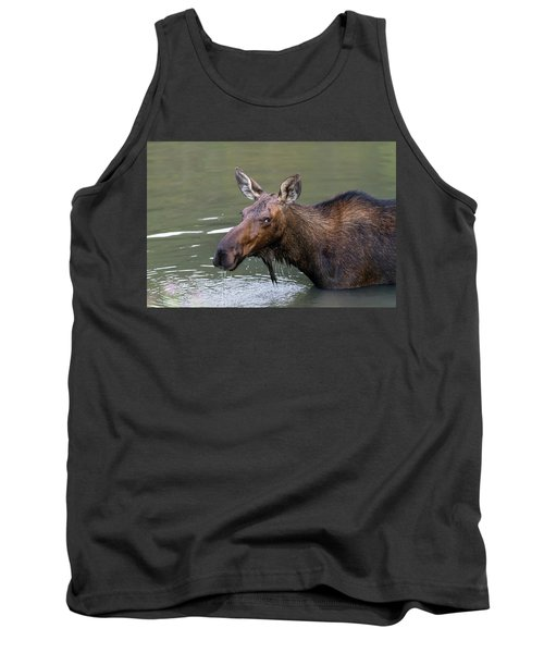 Tank Top featuring the photograph Female Moose Head by James BO Insogna