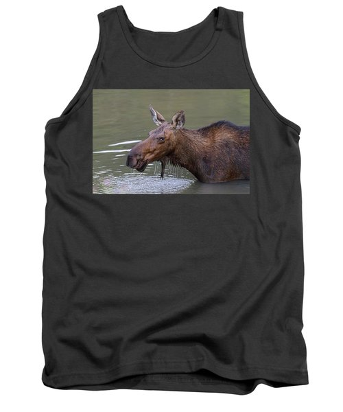 Tank Top featuring the photograph Female Moose Head Shot by James BO Insogna