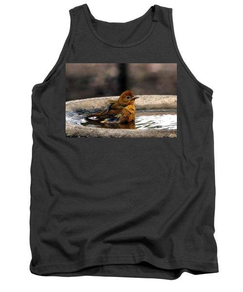 Female Summer Tanager In Bird Bath Tank Top