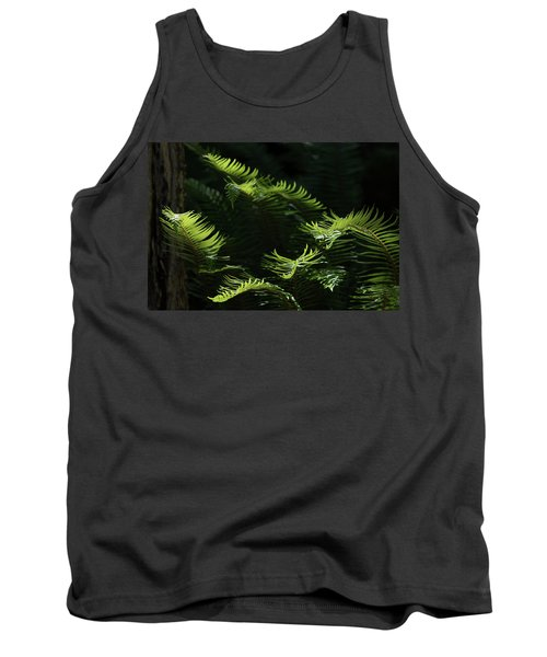 Ferns In The Forest Tank Top by Keith Boone