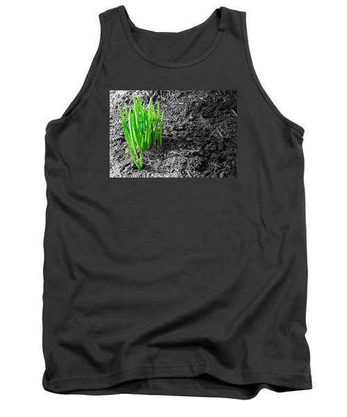 First Green Shoots Of Spring And Dirt Tank Top by John Williams